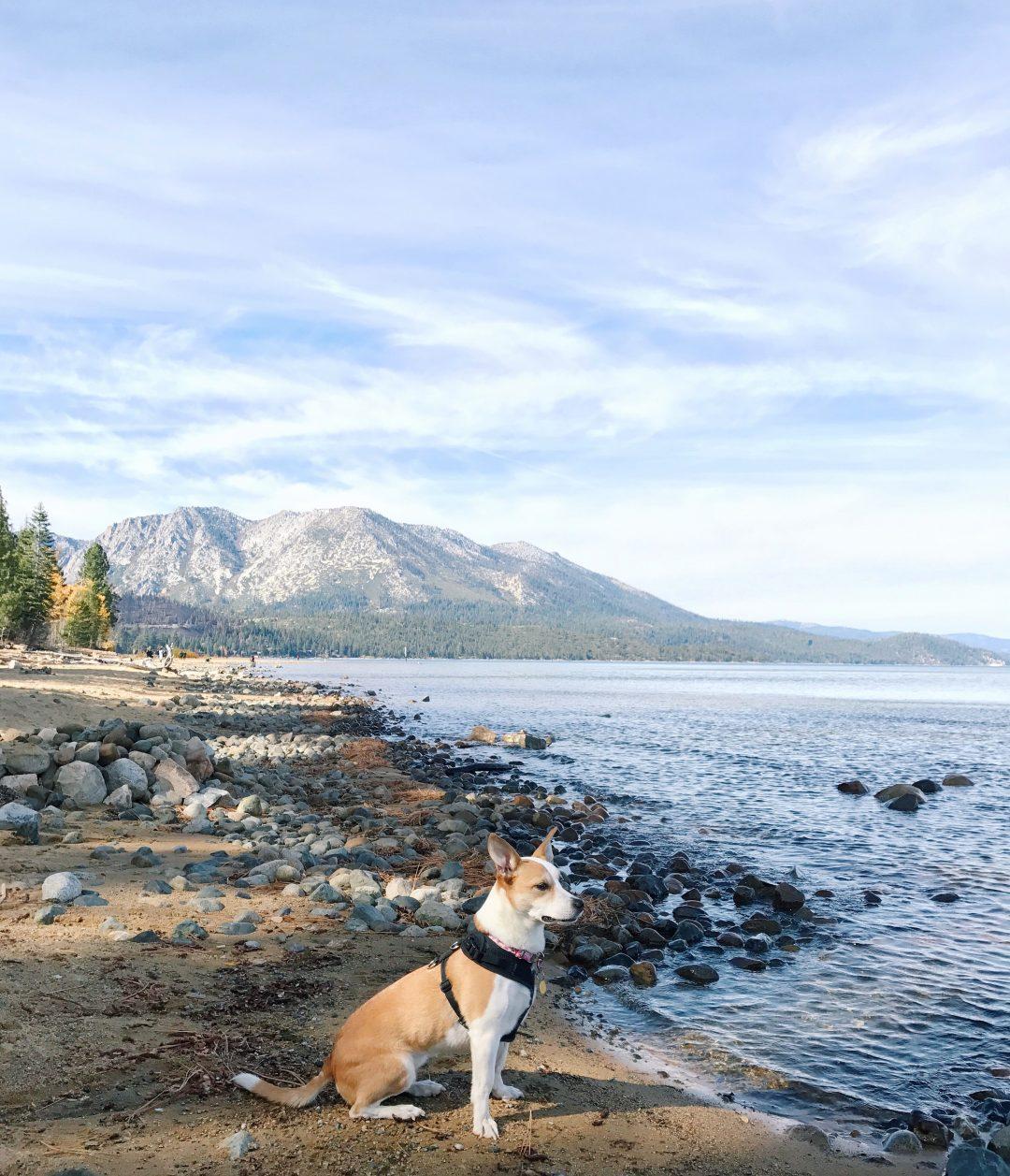A Fall Weekend in Lake Tahoe.
